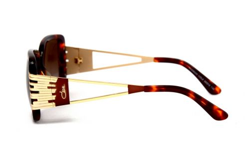 Мужские очки Cazal mod8005-leo